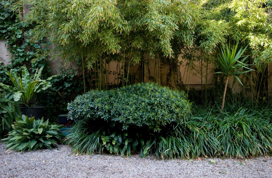 palo verde mature personals Four bedroom apartments for rent in palo alto,  two bathrooms home with a mature private garden in  ca 94303  excellent palo alto schools - palo verde .